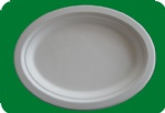 10 inch Oval Plate